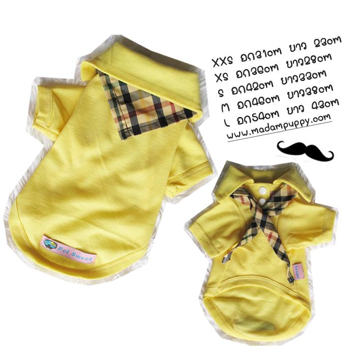 เสื้อน้องหมา เซ็ทเสื้อโปโลสีเหลืองและผ้าพันคอ พร้อมส่ง