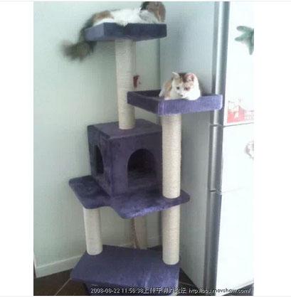 MU0108 คอนโดแมวห้าชั้น บ้านอุโมงค์ ต้นไม้แมว ของเล่นแขวน สูง 145 cm