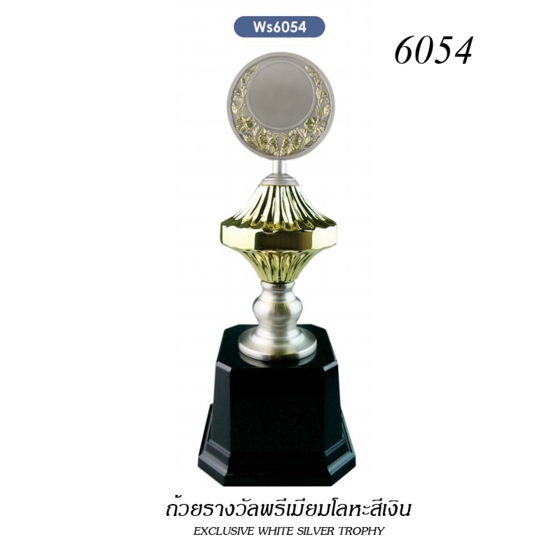 WS-6054