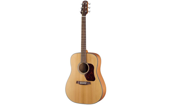 WALDEN GUITAR D570