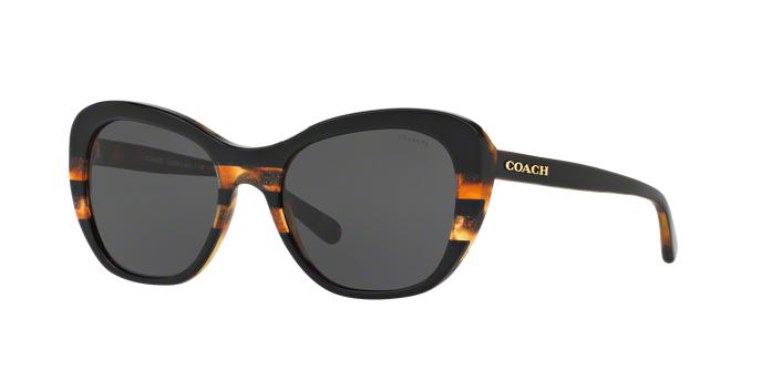 COACH 0HC8204F 544380 BLACK TORT GLTR VARSITY STRIPE Dark Grey Solid