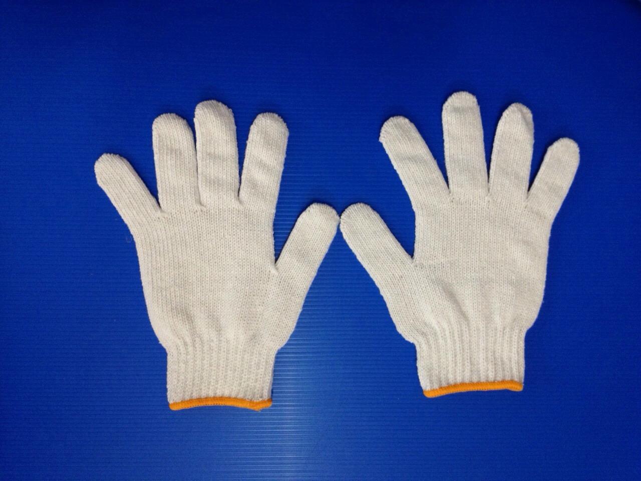 ถุงมือผ้าฝ้ายภาคตะวันออก