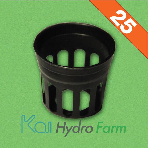 ถ้วยปลูกสีดำ (สำหรับฟองน้ำ) 25 ใบ