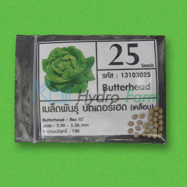 เมล็ดพันธุ์ Butter Head (เคลือบ) 25 เมล็ด