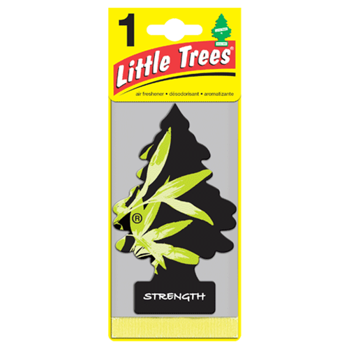 Little Trees กลิ่น Strength