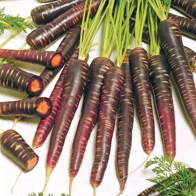 Purple Haze Carrots (แครอทม่วง)