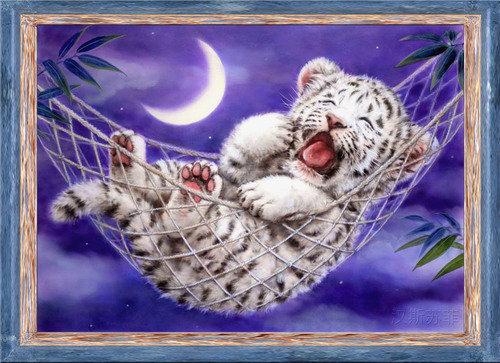 Baby tiger (พิมพ์ลาย)