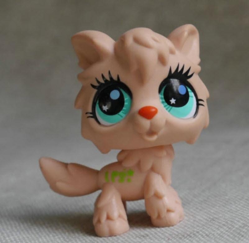 แมว สีน้ำตาล ตาสีเขียว #2278
