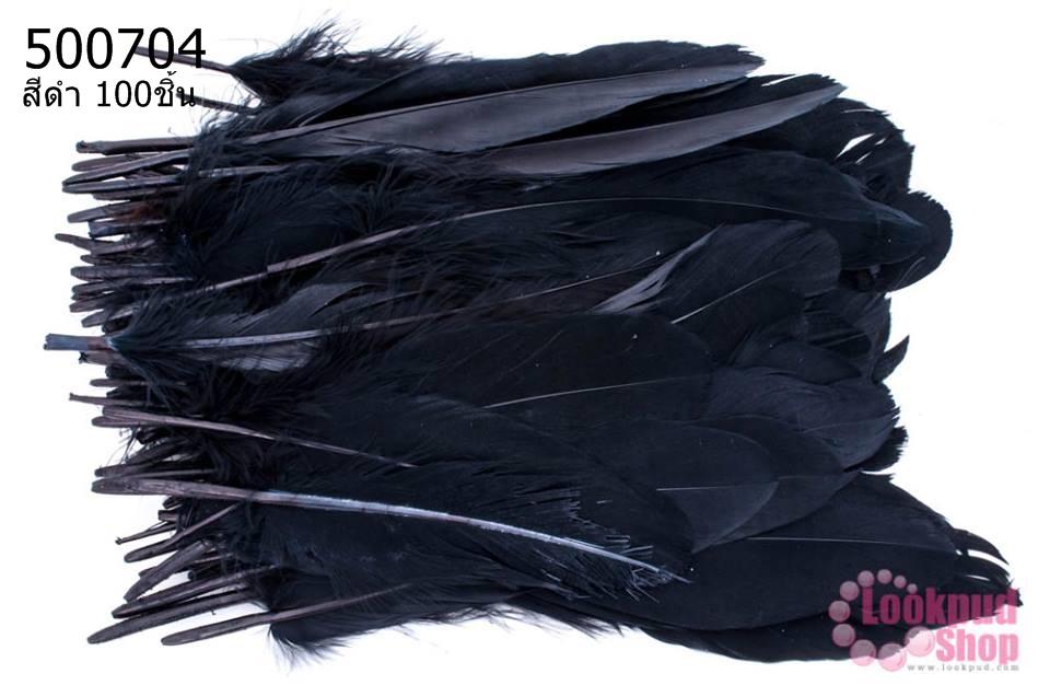 ขนนก(ก้าน) สีดำ 100ชิ้น