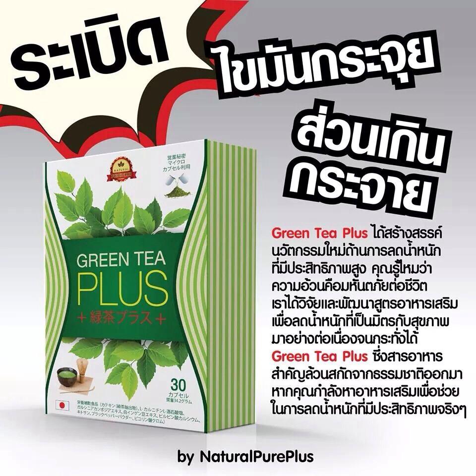 Green Tea Plus ราคา